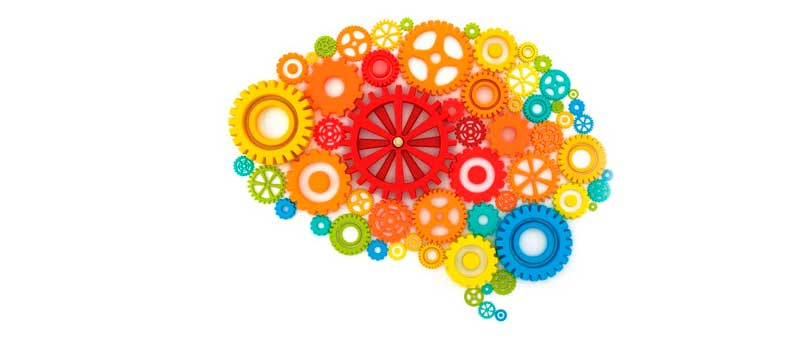 neuropsicologia-epsi-garraf